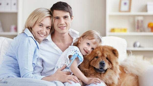 Wills & Trusts dog-young-family Direct Wills Kings Norton